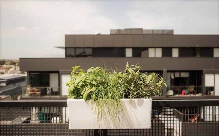 Indoor Modern Planters1