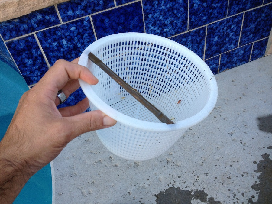 swimming pool strainer baskets