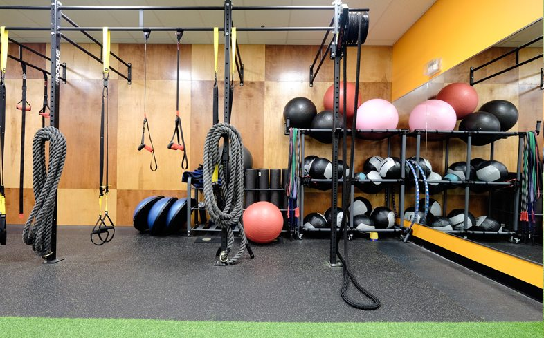 Functional Fitness Rigs