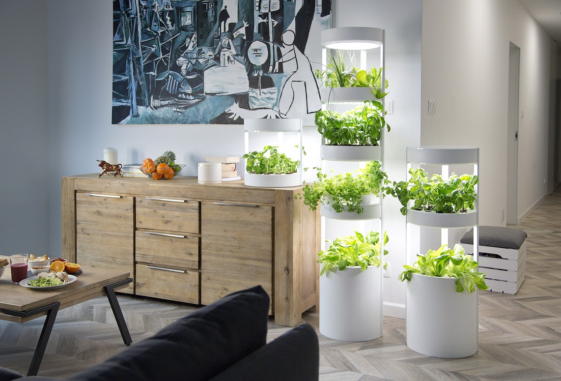 hydroponic system at home