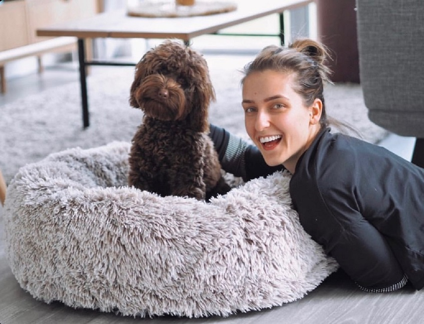 What Material Is Good to Fill a Dog Bed